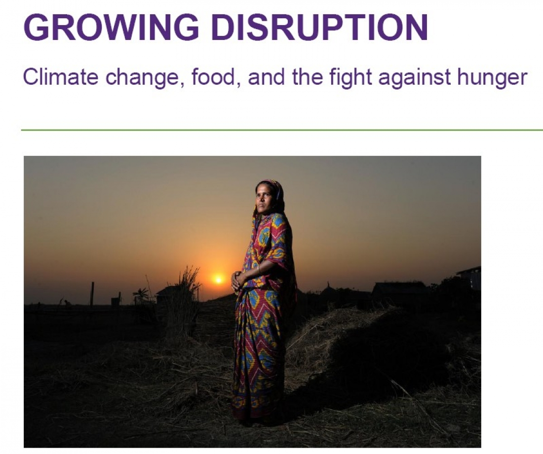 "Report ""Growing disruption: Climate change, food, and the fight against hunger"""
