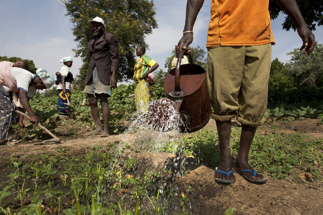 Farmers in Burkina Faso and adaptation to climate change